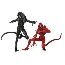 Aliens pack of 2 Genocide 23 cm