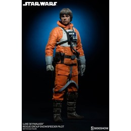 Star Wars figure 1/6 Luke...