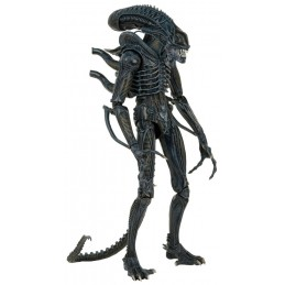 Aliens 1/4 scale figure...