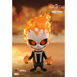 Hot Toys Ghost Rider...