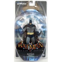Batman Arkham Asylum series...