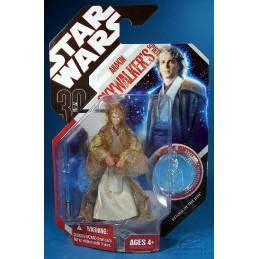 Anakin Skywalker jedi spirit